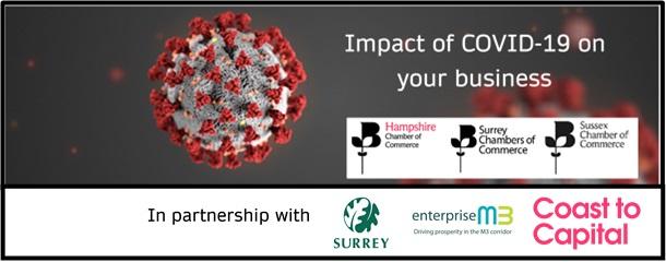 Impact of Coronavirus on your business Survey