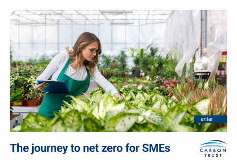 The journey to net zero for SMEs